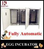 Bon prix ! Complètement automatique approuvé de la CE sauf l'incubateur d'oeufs de l'énergie 10000