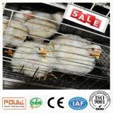 Gaiola automática da galinha de grelha da exploração agrícola das aves domésticas