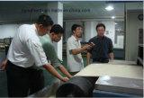 Система Desinsection микроволны для риса/овса