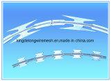 Reticolato del filo del rasoio dell'acciaio inossidabile