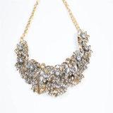 De nieuwe Halsband van de Juwelen van de Manier van de Stenen van de Hars van het Ontwerp Acryl