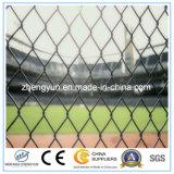 2017年の中国の製造業者の熱い販売は競技場の塀を遊ばす