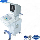 15inch LED Display Switches Scan Scanning / Ultrasound Medical