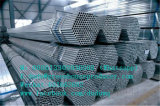 Qualitätsgewächshaus-Rahmen von der China-Fabrik