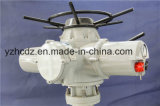 Atuador Multi-Turn elétrico para a válvula giratória (CKD40)