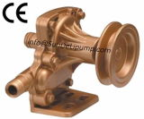 FliehkraftCast Iron Marine Sea Water Pump für Thailand Market