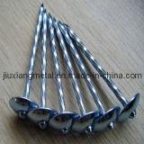 Ongles de toiture de vis (SRN-03)