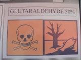 glutaraldehído
