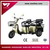 650W самокат, электрический трицикл груза, Bike грязи