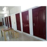 Puerta interior del panel de madera de madera del grano para la sala de estar