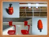 тип автоматическая клетка оборудования птицефермы для цыпленка курочки бройлера слоя