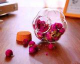 Опарникы тыквы опарника творческой формы цветка опарника конструкции стеклянной стеклянные