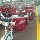 Triciclo elétrico do grande caminhão elétrico da roda do híbrido três do portador para o adulto