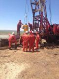 Dispositivo de conducción de tierra de la bomba de la PC del petróleo del tornillo del metano de la capa de carbón del petróleo