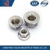 Aço inoxidável M27-M56 Hexagon Flange Nuts
