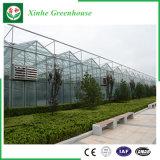 De Serre van het Glas van de multi-Spanwijdte van de landbouw voor Groenten