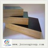 Las ventas de la fábrica filman directo la madera contrachapada Shuttering hecha frente de la madera contrachapada para la construcción