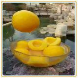 시럽에 있는 2017year에 의하여 통조림으로 만들어지는 노란 복숭아