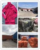 人のための2016年工場方法によって使用される衣服、女性の