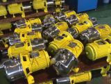 Pompe Jst-100 auto-amorçante électrique avec la tête 1HP de pompe d'acier inoxydable