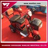 650W motorino, triciclo elettrico del carico, bici della sporcizia