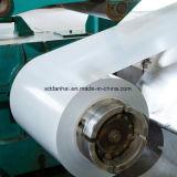 Vorgestrichener Galvalume-Stahlring (PPGL)