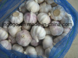 Aglio cinese bianco d'imballaggio della nuova scatola del raccolto