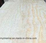 Pegamento del grado E1 de la madera contrachapada B/C del álamo/del abedul/del pino