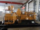 Jogo de gerador sadio China do biogás da prova Lvhuan 300kw com tomada de fábrica refrigerar de água do CHP para o mercado ultramarino