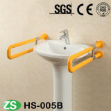 Barra di gru a benna di vendita superiore di sicurezza della toletta di handicap della stanza da bagno dell'acquazzone