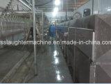 Qualität der automatischen Geflügel-Gemetzel-Maschine