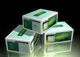 カスタム高品質ボックスの専門の製造