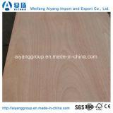 madera contrachapada de 18m m Bintangor/Okoume/Pine/Birch para los muebles