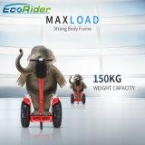 Constructeur professionnel de pouvoir électrique du scooter 4000W avec du ce