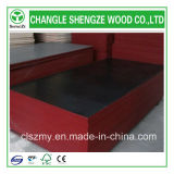 安いPrice 18mm Black Film Faced Plywood