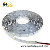 5050 30LED/M Flexible LED Strip with CE Approval