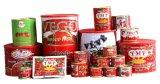 La goma de tomate conservada marca de fábrica del OEM de toda clasifica 70 G a 4.5kg