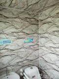 Paneling metálico gravado alta qualidade da parede exterior