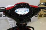 Vespa eléctrica de la buena calidad para Woring y las compras