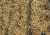 Большая емкость машина дробилки сторновки для сторновки Legume пшеницы мозоли
