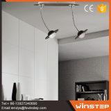 Indicatore luminoso moderno del punto del fiore LED delle 2 lampadine per la decorazione domestica