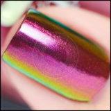 Colores múltiples del camaleón que cambian de puesto el polvo del pigmento del cromo