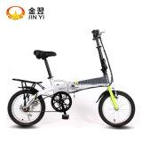 도시 Ebike 건전지 자전거 단 하나 속도 자전거