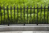 Rete fissa nera del metallo di obbligazione di rivestimento per il cortile