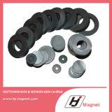 Experimentado ISO / Ts16949 Certificado Permanent Ferrite Magnet