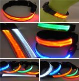 LED 가벼운을%s 가진 LED 개 목걸이는 위로 섬광