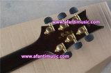 Fotorezeptoren reden an,/Mahagonikarosserie u. Stutzen,/Afanti elektrische Gitarre (APR-081)