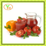 Hot Selling Canend Tomato Paste Sala