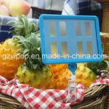 Держатель цены супермаркета пластичный для магазина плодоовощ