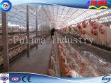 La volaille préfabriquée de cloche de ferme avicole de poulet de coût bas renferment (FLM-F-015)